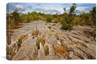 Limestone Landscape, Canvas Print