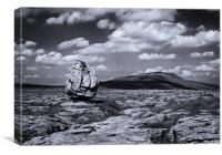 Glacial erratic facing Whernside, Canvas Print