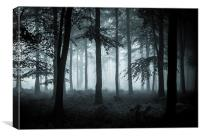 The Fog, Canvas Print