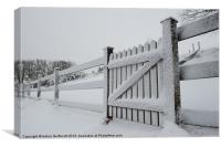 Snow Covered Gate, Canvas Print