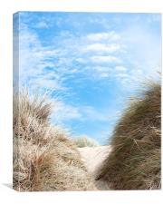 Path Through the Dunes, Canvas Print