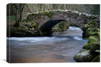 Hisley Bridge Lustleigh Cleave, Canvas Print