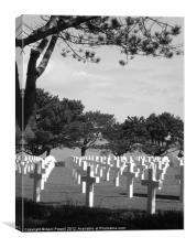 war graves, Canvas Print