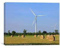 Wind In Farm., Canvas Print