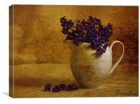 Duranthus in oils, Canvas Print