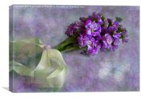 Pretty lilacs, Canvas Print