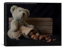 Little bear, Canvas Print