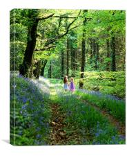 Children in Bluebell Woods, Canvas Print