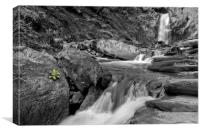 Pistyll Rhaeadr Waterfall, Canvas Print