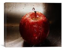 gala apple, Canvas Print