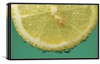 Lemon, Canvas Print