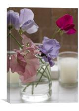 Cut sweet peas, Canvas Print