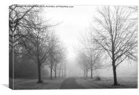 Freezing Fog in Admirals Park, Canvas Print