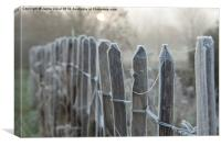 Frosty Fence Posts, Canvas Print