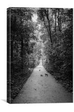 Monkeys in Bukit Timah Nature Reserve, Canvas Print