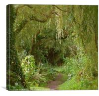Secret pathway to where, Canvas Print