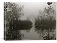 Reflections on a foggy lake, Canvas Print