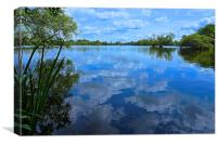 Stockers Lake Nature Reserve Rickmansworth, Canvas Print