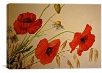 Common Red Poppy with Hare bell and Mayweed, Canvas Print