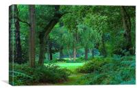 Chorleywood Common and woods , Canvas Print