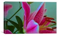 Lily Flower Art Attack 2, Canvas Print