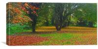 Simple what Autumn is all about , Canvas Print