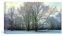 Winter the cold season                            , Canvas Print
