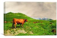 Cowbells in the Mountains, Canvas Print