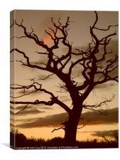 Dead Tree, Canvas Print