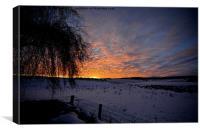 Winter Sunrise Aberdeenshire, Canvas Print