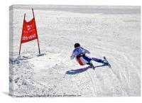 Downhill Alpine Ski Racer, Canvas Print
