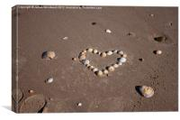 Heart of shells, Canvas Print