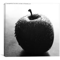 Apple in B&W, Canvas Print