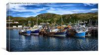 Mallaig Harbour in Scotland, Canvas Print