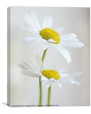 Softly and Gently, Canvas Print