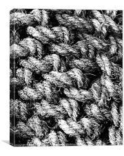 Rope, Canvas Print