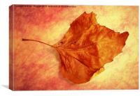 Autumn Cometh, Canvas Print