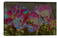 Abstract Flowers, Canvas Print