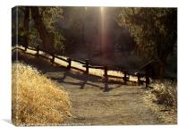The lighted path, Canvas Print