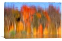 Fall Reflection, Canvas Print
