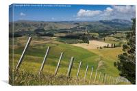 View from Te Mata, Canvas Print