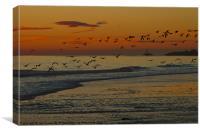 November Sunrise, Canvas Print