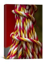 Rope Helter Skelter, Canvas Print