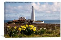 St Mary's Island in springtime, Canvas Print