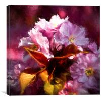 Artistic Copper leaves and Cherry blossom, Canvas Print