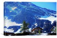 Alpine pastures around Lake Gossau, Canvas Print