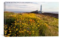 Wild flowers and St Mary's Island, Canvas Print