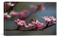 Artistic springtime, Canvas Print