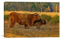 Highland cow and calf with artistic filter, Canvas Print
