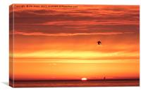 Stunning North Sea Sunrise, Canvas Print
